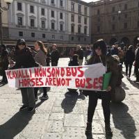FIRENZE: BASTA CARROZZELLE TRAINATE DA CAVALLI!!!