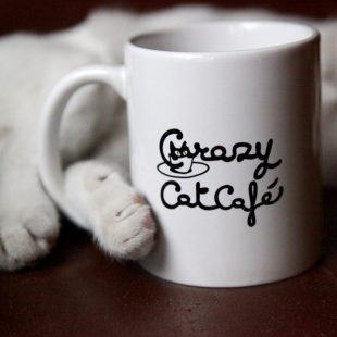 Feliway e Crazy Cat Cafè presentano HAPPY TOGETHER