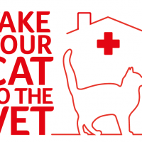 TAKE YOUR CAT TO THE VET by ROYAL CANIN