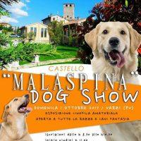 MALASPINA DOG SHOW