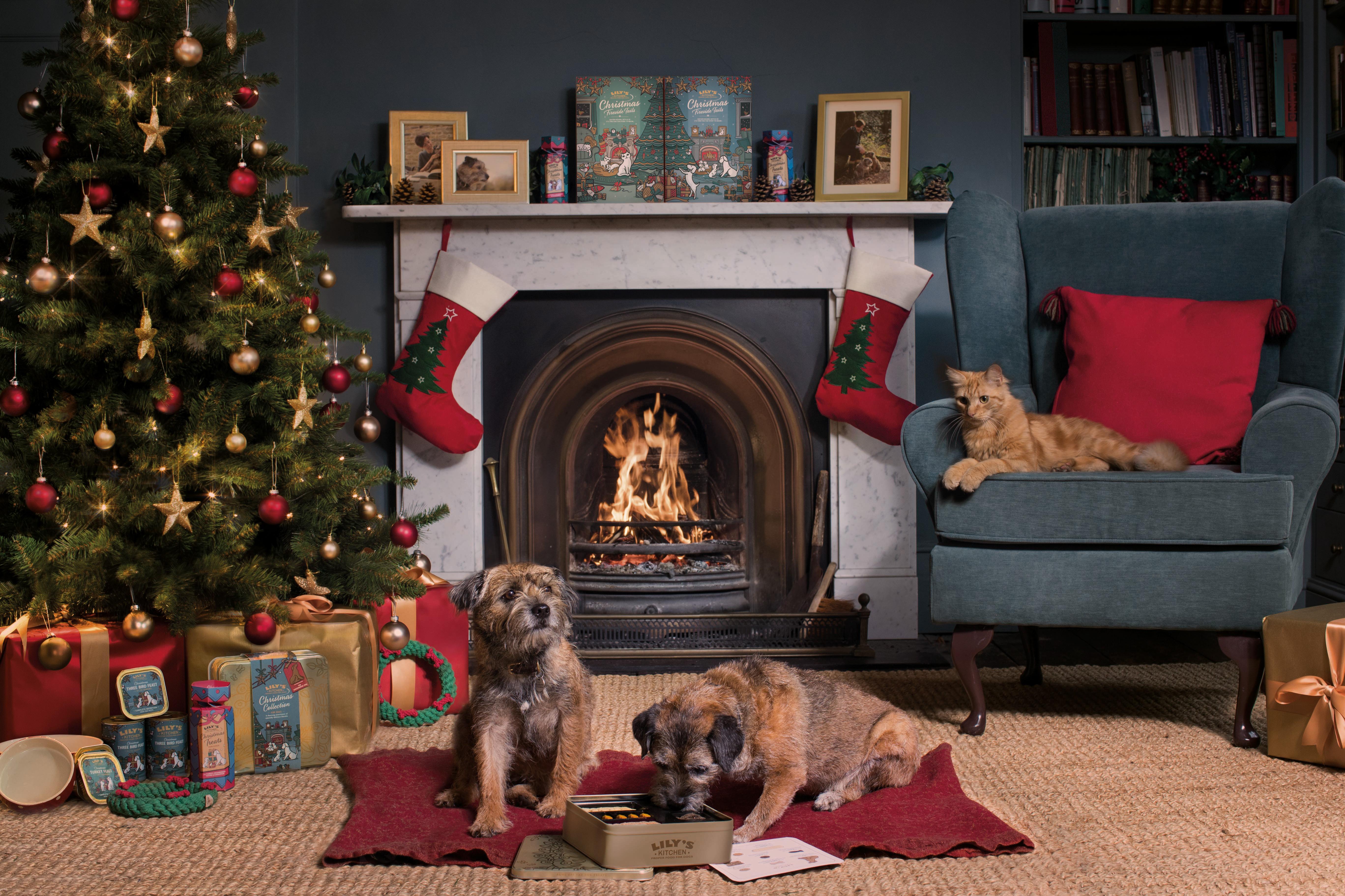 Lily S Kitchen Porta La Magia Del Natale Nelle Ciotole Dei