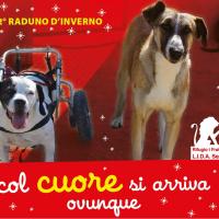 Il Natale di LIDA OLBIA, si festeggia il 3 Dicembre a Milano