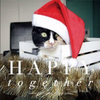 Happy Together Xmas Edition al Crazy Cat Cafe'
