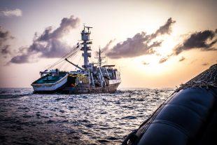 La Liberia arresta bracconieri high-tech per pesca illegale