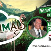 ANIMALS – IL MONDO CHE VORREI