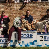 MONFERRATO DOG SHOW 2018