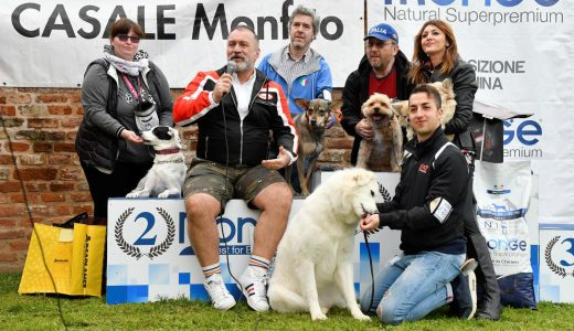 Nyota da Zanzibar a Monferrato Dog Show 2018