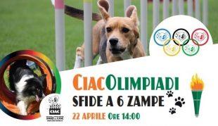 A Varese fai del tuo cane un Atleta per un Giorno
