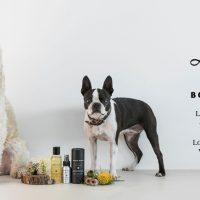 BONDI WASH dalla natura per il tuo cane