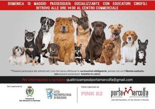 Quattrozampe al Porta Marcolfa; la prima tappa di tour per valorizzare l'amore ed il rispetto per i cani