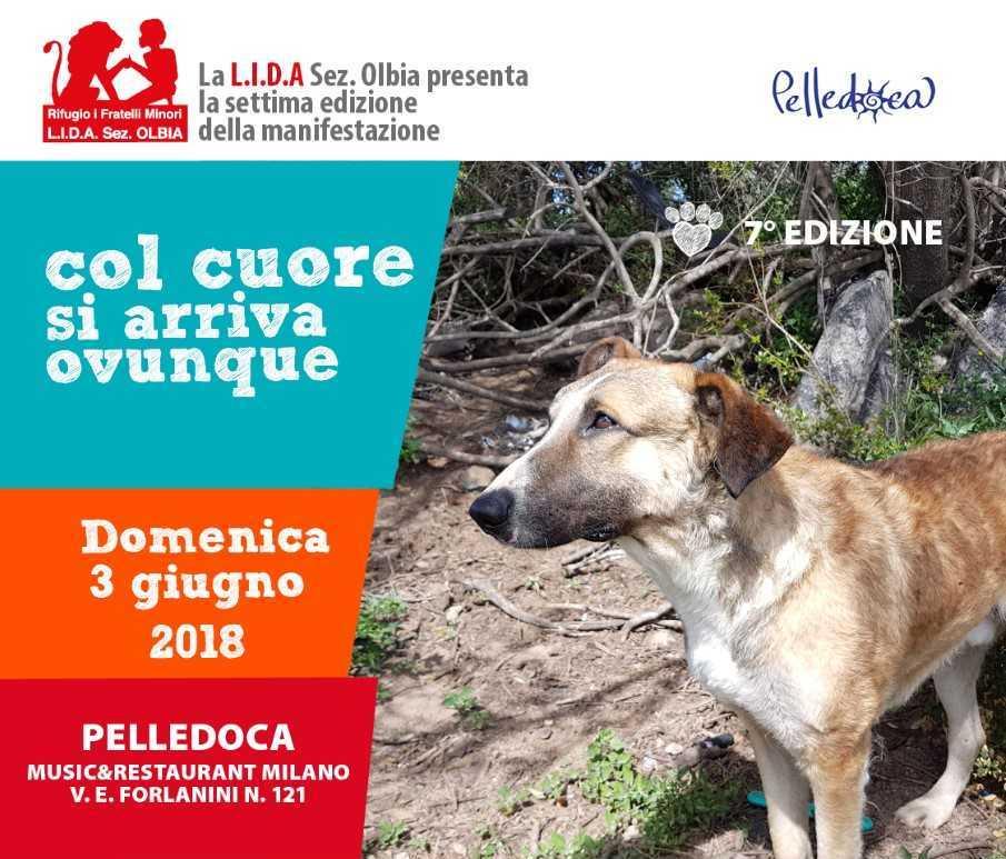 LIDA OLBIA - COL CUORE SI ARRIVA A...MILANO