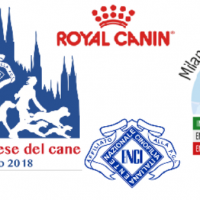 2° edizione Settimana Milanese del Cane ed ENCI WINNER Show Milano, 11-17 giugno 2018