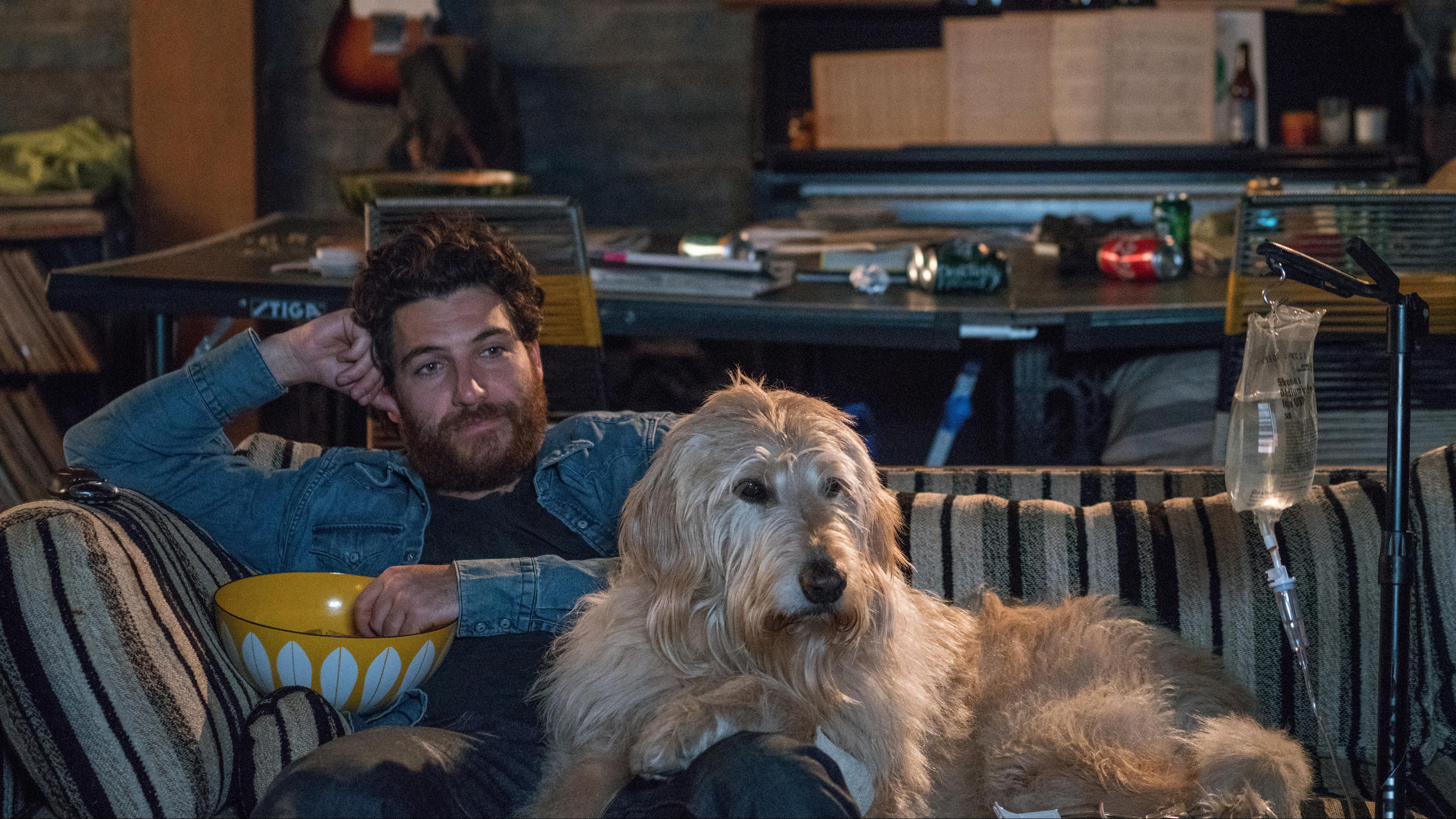 """Dog Days"" amori a quattro zampe al cinema"