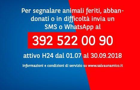 392 5220090 IL NUMERO CONTRO L'ABBANDONO DEGLI ANIMALI