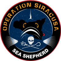 Operazione Siracusa di Sea Shepherd: interrotta un'operazione di bracconaggio