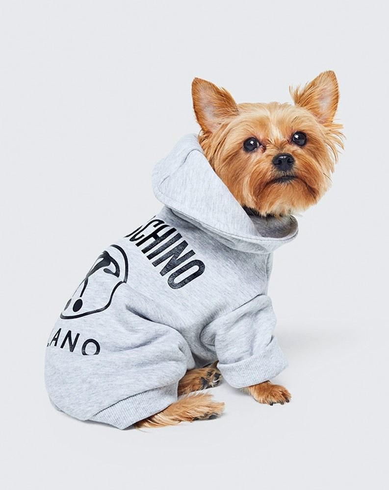 Moschino e H&M insieme per gli animali.