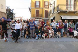 La Coppia dell'Autunno in piazza a Lecco