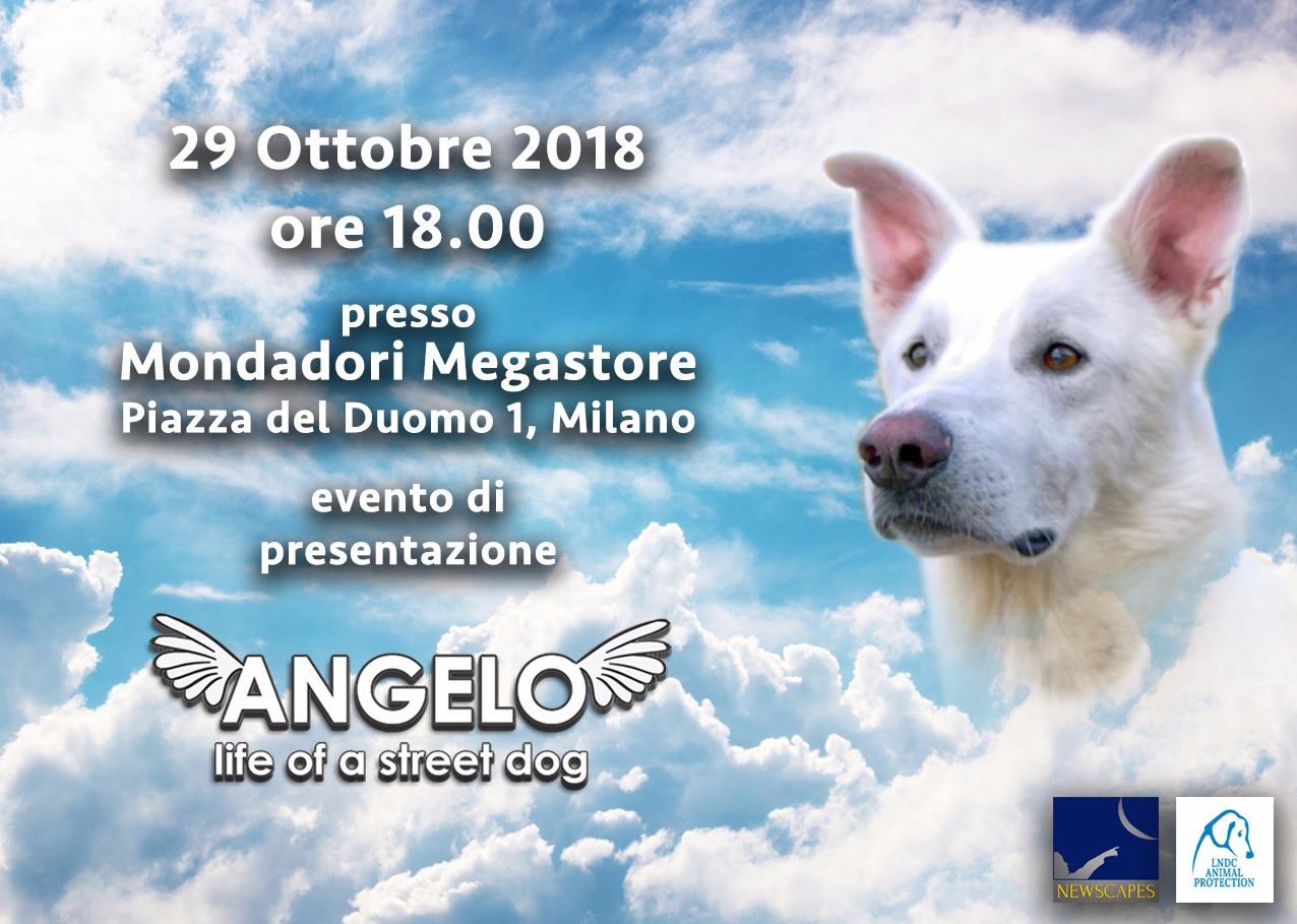 Angelo – Life of a street dog - Presentazione ufficiale a Milano