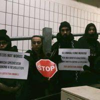 BLOCCO DEL MATTATOIO DI TORINO: 100 attivisti entrano all'interno