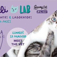 FELI_LAB al Crazy Cat Cafe' di Milano
