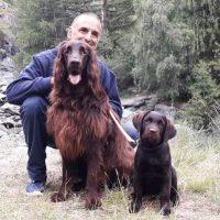 L'IMPATTO DELLA PET THERAPY SULL'ANIMALE
