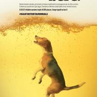 #BASTATESTANIMALI – BRINDARE PER GLI ANIMALI NON È UN PIACERE!!!
