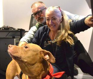 """""""Storia di un cane che non voleva piu' amare"""" di Monica Pais"""