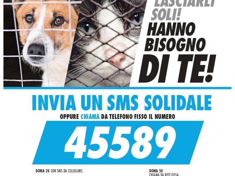 45589 SMS-SalvaMi Subito