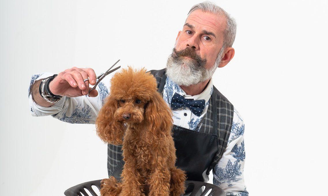 5 Consigli utili per la Pulizia del tuo Cane