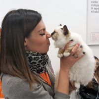 CAT DAY a Ca' Zampa Brugherio