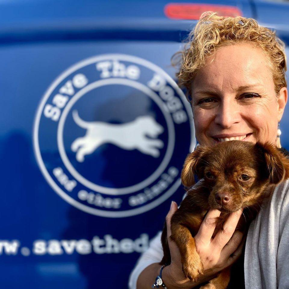 Il Fanta Scandalo dei Migliaia di cani Italiani dati alla Germania per la Vivisezione
