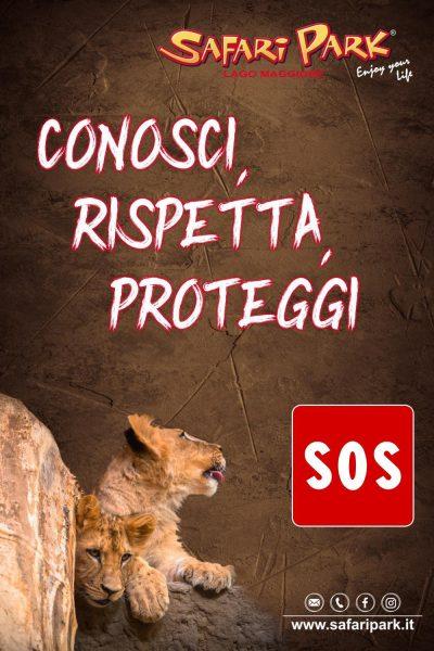 Safari Park Lago Maggiore: è emergenza!