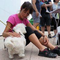 Stefania Gioria: #iorestoacasa con i miei animali