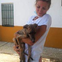 Estate nelle Perreras per Stephanie Castiglioni di Forza Rescue Dog