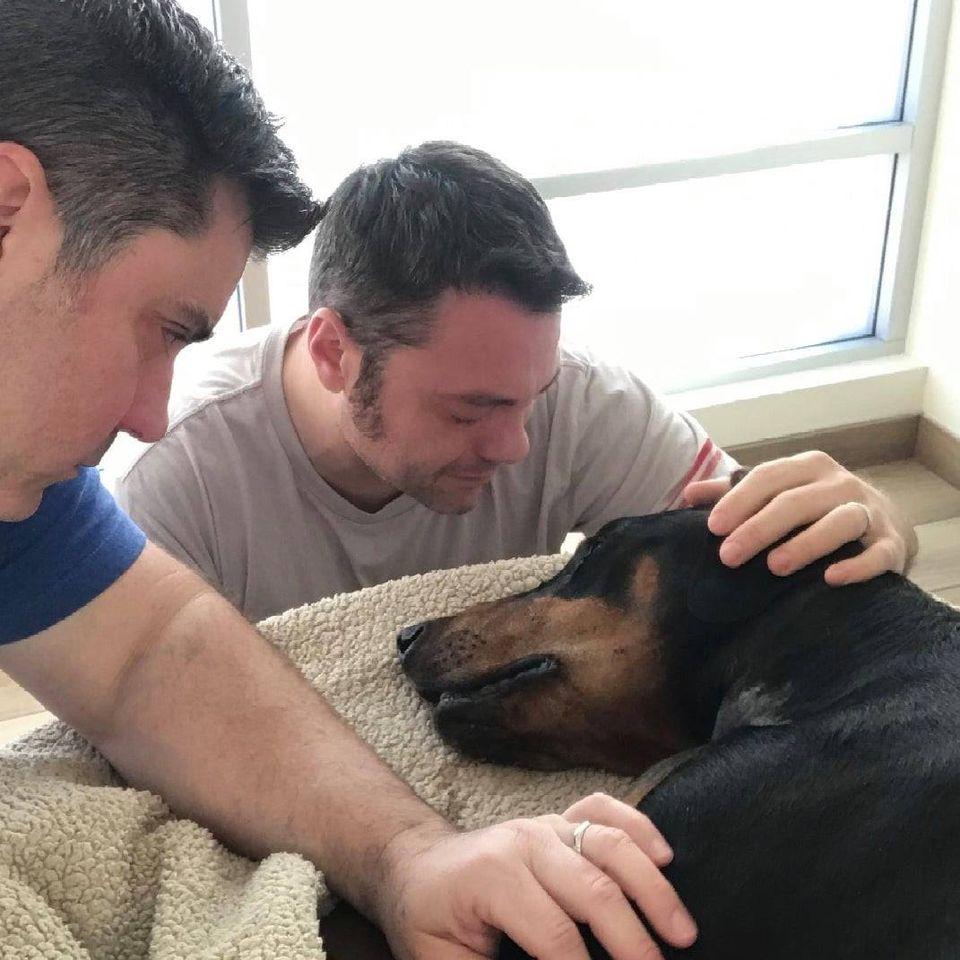Tiziano Ferro piange il suo cane e lancia un messaggio
