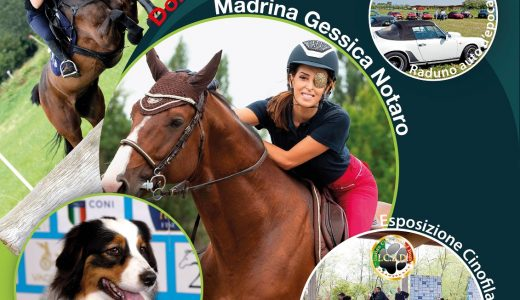 A Novara, Cavalli e …non solo 2020