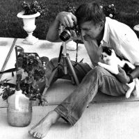 Walter Chandoha; l'arte di fotografare Gatti e Cani