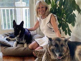 Tornano i cani alla Casa Bianca