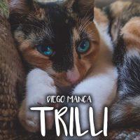 TRILLI – Riflessioni di una gatta in degenza