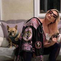 Sparano al Dog Sitter e rapiscono i cani di Lady Gaga
