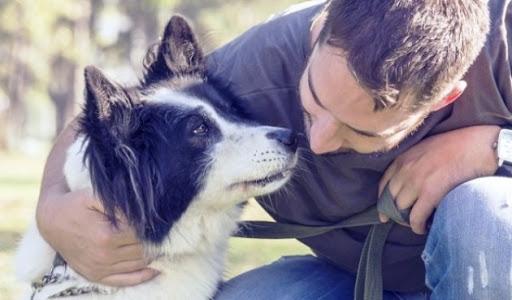 """Sguardi tra cani e uomini: un fatto di """"naso""""?"""