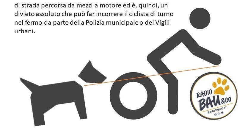 In Bicicletta senza Cane al seguito. Lo dice la Legge!