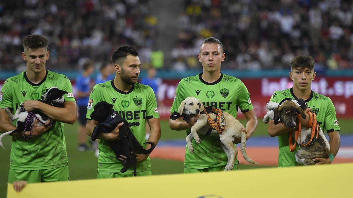 Per un anno, i calciatori della Romania porteranno in campo i cuccioli di cane in cerca di adozione