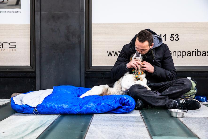Save The Dogs, per strada a Milano
